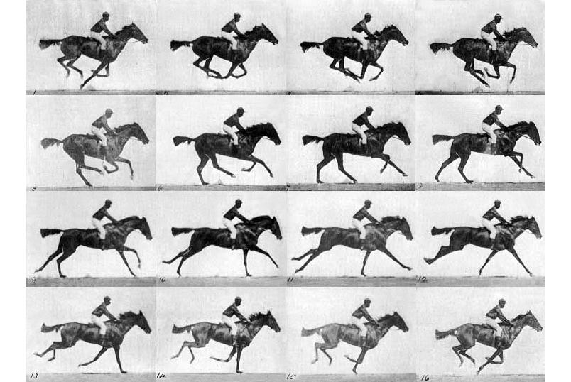 Eadweard Muybridge - The Horse in Motion   Ακαδημία Δημιουργικής Φωτογραφίας